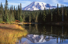 Tours to National Parks USA